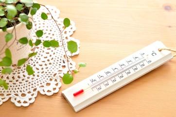温度計と観葉植物