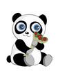 Panda with roses