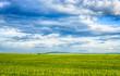 Leinwandbild Motiv Beautiful landscape field of wheat, cloud and mountain