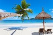 Fototapeten,seychellen,stranden,kokospalme,insel
