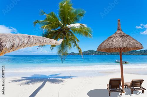 plage paradisiaque des Seychelles - 53079124