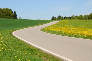 Agrarland in Bayern mit bluehender Wiese.