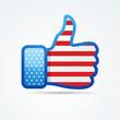social american flag