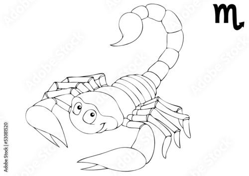 """""""scorpion skorpion escorpion scorpio sternzeichen"""
