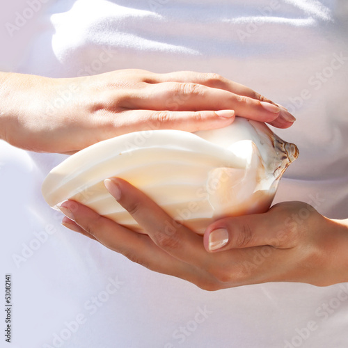 Большая морская ракушка в нежных женских руках