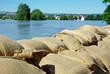 Leinwandbild Motiv Hochwasserschutz