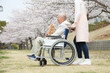 Asian senior man sitting on a wheelchair with caregiver and dog