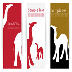 Vector image of an camel banners .