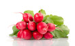 Fresh Red Radishes with Green Leaves