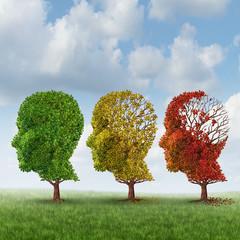Brain Aging
