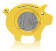 Das Eurosparschwein