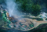 hot spring in Waimangu volcanic valley
