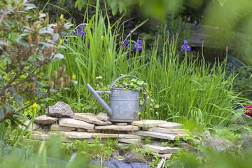 alte Gießkanne als Gartendekoration