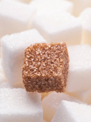 one brown sugar lump in front of lots of white sugar cubes backl