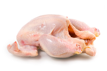 fresh raw chicken on a white background