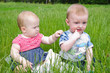 Two babies in the grass