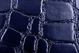 blue crocodile leather texture