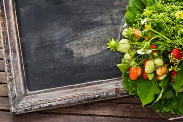 Erdbeerstrauß mit leerem Schild - Bouquet of strawberries, sign