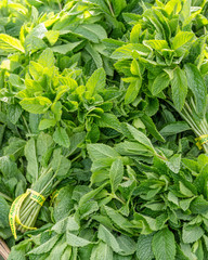 Fresh bundles of mint leaves on display at the market