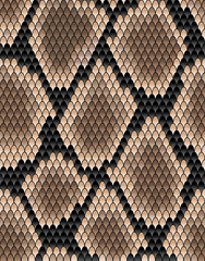 Seamless pattern of snake skin