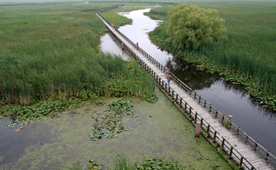 Point Pelee Boardwalk