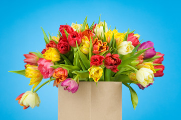 Tulips in paper bag on blue background