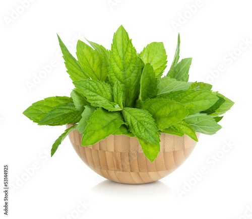 Wood bowl with fresh mint