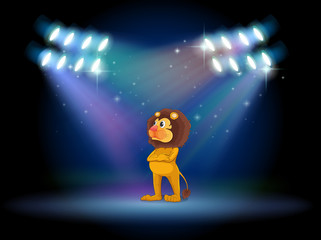 A lion standing in the middle of the stage