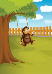 A monkey swinging on a tree