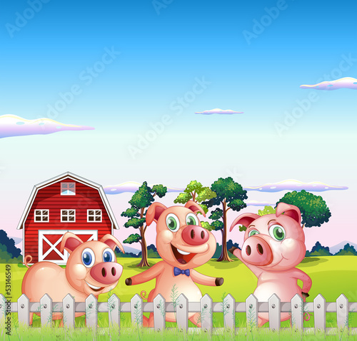 Three pigs dancing inside the fence