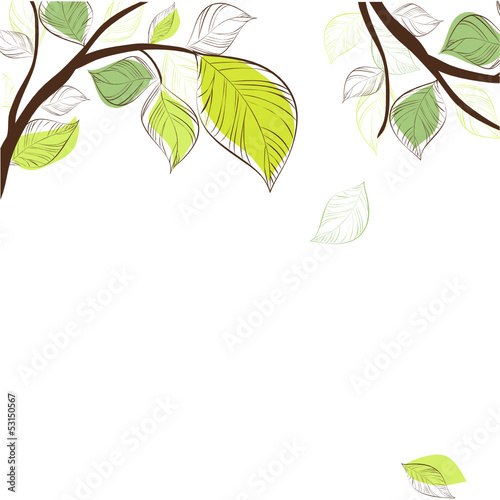 Tree with fresh green leaves