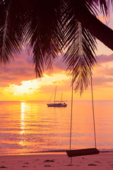 Rope swing on tropical palm during sunset
