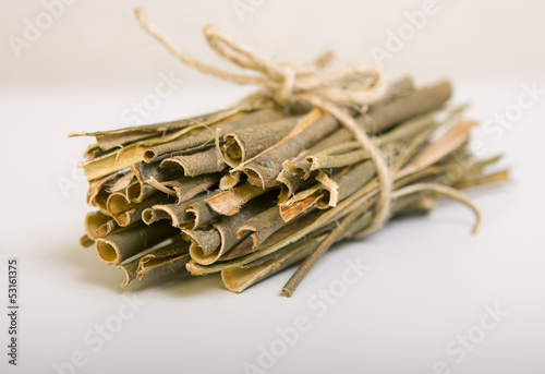 Willow bark medical