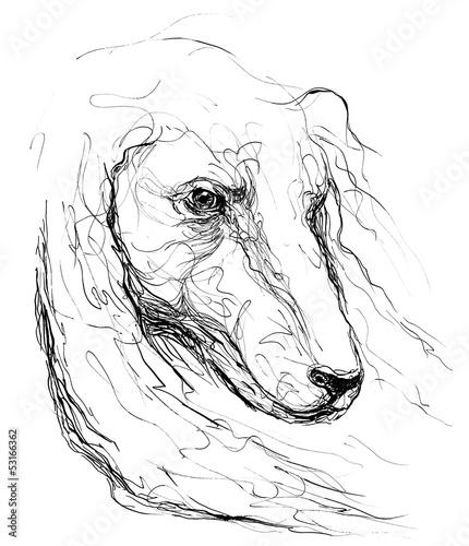 dog © okalinichenko