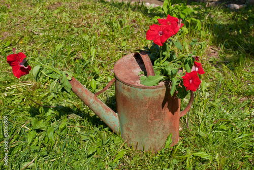 Flowers in an old watering can.