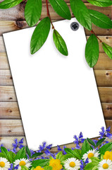 White sheet of paperb and wild flowers on the wooden background