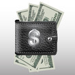 Wallet , dollar USA. Leather and metal structure. Vector