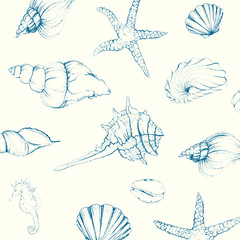 Vector Illustration of Hand-drawn Seashells