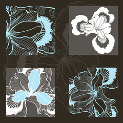 Vector set of  iris flowers. Decorative elements