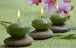 Wellness Grün Orchidee Kerzen