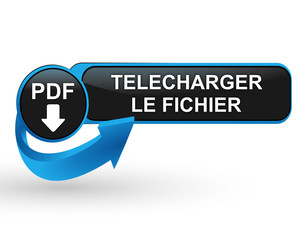 pdf télécharger le fichier sur bouton web design bleu