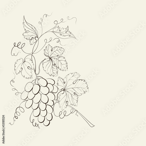 Engraving of grapes branch.