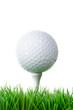 golfball auf tee im rasen