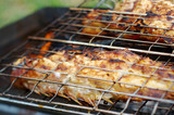 grilling sea fishes on campfire grate