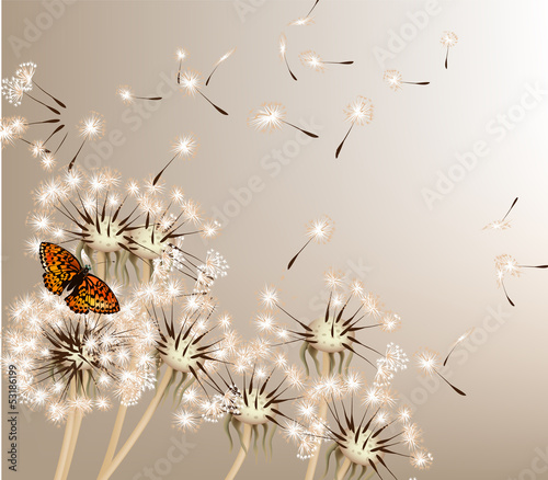 Wall mural Abstract background with vector dandelions