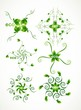 abstract Set of floral elements leaf for design