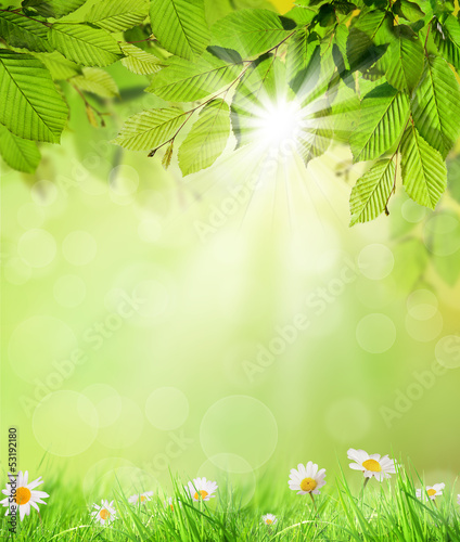 Natural background - 53192180