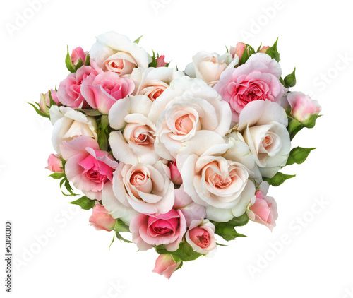 canvas print picture Roses flowers  heart shape isolated.