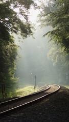 bahngleise und licht durch die bäume - fahrt ins licht