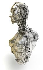 Cyborg, robot, Androide volto, 3d, informatica, computer